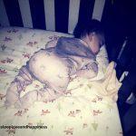 sleep with Denver baby sleep consultant